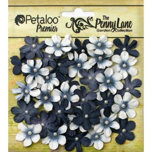 Petaloo - Penny Lane Collection - Floral Embellishments - Mini Daisy Petites - Black