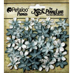 Petaloo - Penny Lane Collection - Floral Embellishments - Mini Daisy Petites - Teal