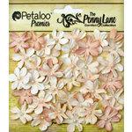 Petaloo - Penny Lane Collection - Floral Embellishments - Mini Daisy Petites - Antique Mauve