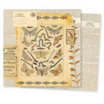 7 Gypsies - Conservatory Collection - 12 x 12 Double Sided Paper - Mesofauna