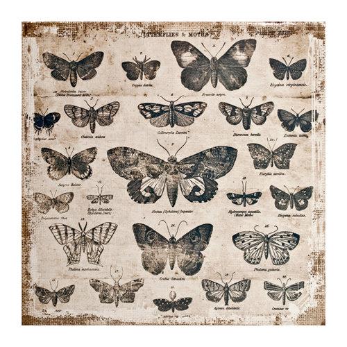 Tim Holtz - District Market Collection - Idea-ology - 12 x 12 Burlap Canvas Panel - Butterflies