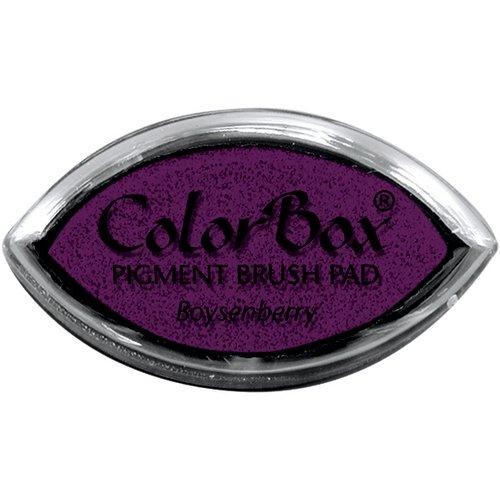 ColorBox - Cat's Eye - Archival Dye Ink Pad - Boysenberry