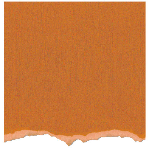 Core'dinations - Tim Holtz - Distress Collection - 12 x 12 Textured Cardstock - Spiced Marmalade