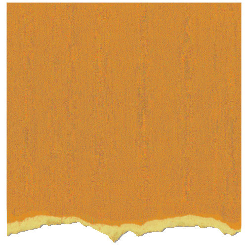 Core'dinations - Tim Holtz - Distress Collection - 12 x 12 Textured Cardstock - Wild Honey