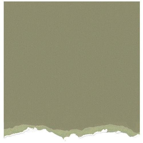 Core'dinations - Tim Holtz - Distress Collection - 12 x 12 Textured Cardstock - Bundled Sage