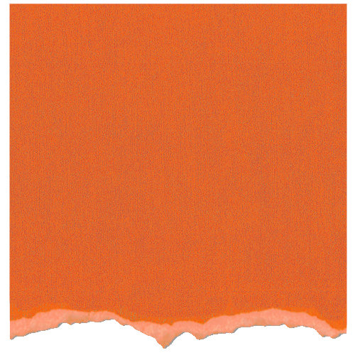 Core'dinations - Tim Holtz - Adirondack Collection - 12 x 12 Textured Cardstock - Sunset Orange