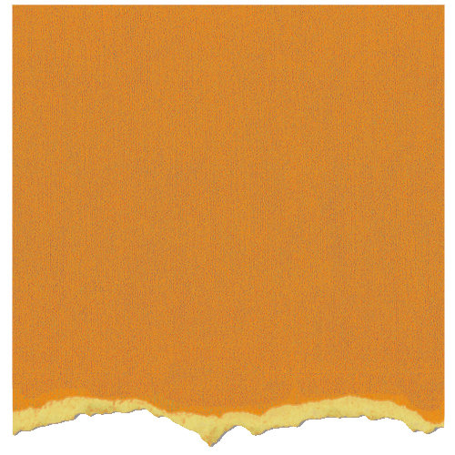 Core'dinations - Tim Holtz - Adirondack Collection - 12 x 12 Textured Cardstock - Butterscotch
