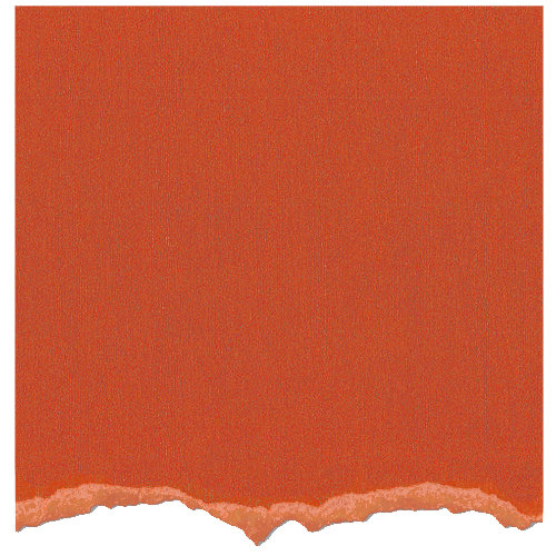 Core'dinations - Tim Holtz - Adirondack Collection - 12 x 12 Textured Cardstock - Terra Cotta