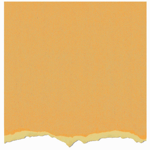 Graphic 45 - Core'dinations - Signature Series Collection - 12 x 12 Textured Color Core Cardstock - Gala Gold