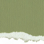 Graphic 45 - Core'dinations - Signature Series Collection - 12 x 12 Textured Color Core Cardstock - Spring Green