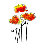 Rubbernecker Stamps - Cling Mounted Rubber Stamp Set - Poppies