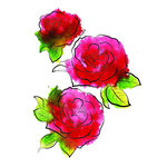 Rubbernecker Stamps - Cling Mounted Rubber Stamp Set - 3 Roses