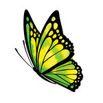 Rubbernecker Stamps - Cling Mounted Rubber Stamp Set - Butterfly 4