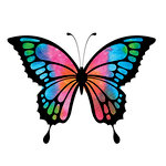 Rubbernecker Stamps - Cling Mounted Rubber Stamp Set - Butterfly 7