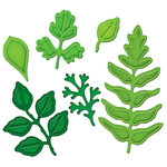 Spellbinders - Shapeabilities Collection - Die Cutting and Embossing Templates - Foliage