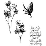 Stampers Anonymous - Tim Holtz - Cling Mounted Rubber Stamps - Nature's Moments