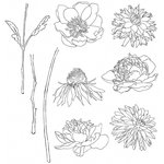 Stampers Anonymous - Tim Holtz - Cling Mounted Rubber Stamp Set - Flower Garden