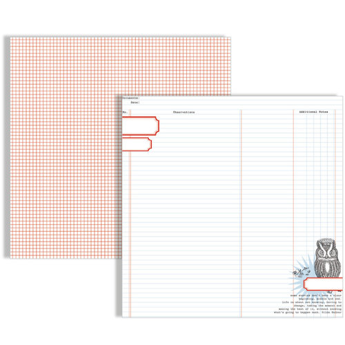 Teresa Collins Designs - Stationary Noted Collection - 12 x 12 Double Sided Paper - Owl Ledger