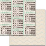 Teresa Collins - Something Wonderful Collection - 12 x 12 Double Sided Paper - Bingo