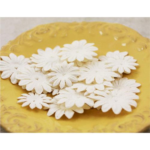 Prima - E Line - Daisy Delicacies Collection - Flower Embellishments - White