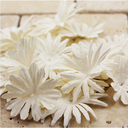 Prima - E Line - Confetti Cake Collection - Flower Embellishments - White