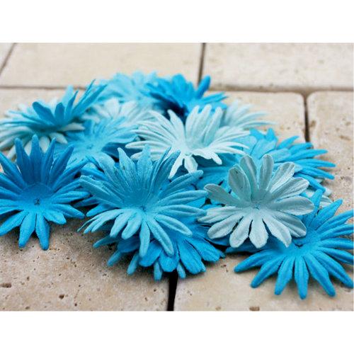 Prima - E Line - Confetti Cake Collection - Flower Embellishments - Blue
