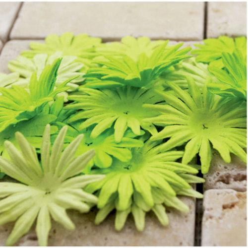 Prima - E Line - Confetti Cake Collection - Flower Embellishments - Lime Green