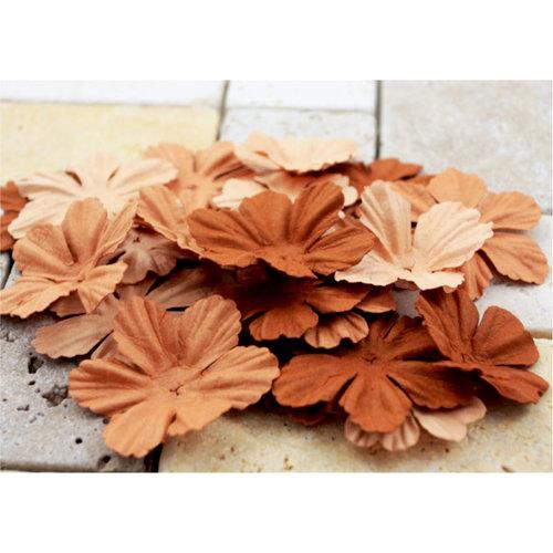 Prima - E Line - Bermuda Breeze Collection - Flower Embellishments - Brown