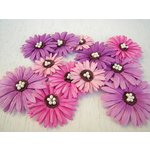 Prima - Daisy Dreams Collection - Flowers - Juicy