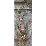 Prima - Petite Fleur Vine Collection - Flower Vine - Lily