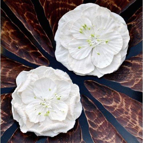 Prima - Fiesta Flowers Collection - Flowers - Glaze