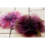 Prima - Fleur Danseur Collection - Flower Embellishments - Promenade