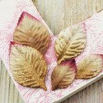 Prima - Heirloom Rose Collection - Velvet Leaves - Gold Dust