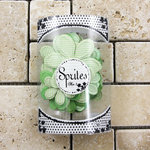 Prima - Sprites 3 Brights Collection - Assorted Flowers - Green, CLEARANCE