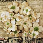 Prima - Painterly Petals Collection - Flower Embellishment Bag - Hydrangeas - Tan
