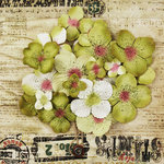 Prima - Painterly Petals Collection - Flower Embellishment Bag - Hydrangeas - Olive, BRAND NEW