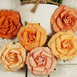 Prima - Winter Rose Collection - Flower Embellishments - Melon Ice, CLEARANCE