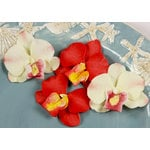 Prima - Island Orchid Collection - Flower Embellishments - Parrot, CLEARANCE