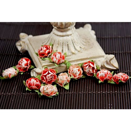Prima - Cameo Roses Collection - Miniature Mulberry Flower Embellishments - Mandarin, CLEARANCE
