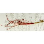 Prima - Glistening Vines Collection - Jeweled Vine Embellishments - Brick, CLEARANCE