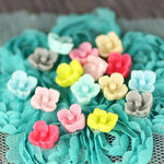 Prima - Arco Iris Collection - Flower Center Embellishments - Sparkling Spring, CLEARANCE