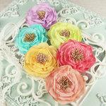 Prima - Petticoat Collection -  Flower Embellishments - Ballet