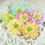 Prima - Petticoat Collection -  Flower Embellishments - Bon Bon