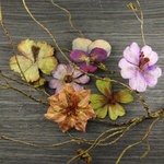 Prima - Bella Notte Collection - Flower Embellishments - Pinehurst