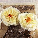 Prima - Parfait Collection - Fabric Flower Embellishments - Parfait