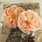Prima - Parfait Collection - Fabric Flower Embellishments - Peach