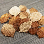 Prima - Lovely Collection - Fabric Leaves Embellishments - Mix 5