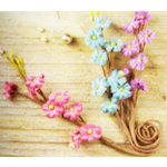 Prima - Aire Collection - Flower Embellishments - Mix 4, CLEARANCE