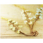 Prima - Aire Collection - Flower Embellishments - Mix 6