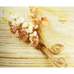 Prima - Aire Collection - Flower Embellishments - Mix 7, CLEARANCE